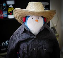 344 - YeeHaw A Cowboy Penguin (jbpro) Tags: 365 days photo challenge december cowboy penguin hat hoss berghoff beer ale