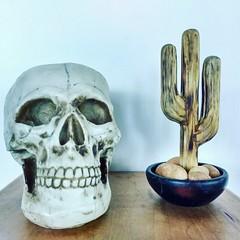 Tá vendo esse cactus aí? É de madeira! Foi o @michaelf080 quem fez 💀🌵 #caveira #cactus #decoração (fabriciabarcelos) Tags: decoração cactus caveira