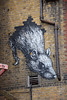 DSC_0641 Petticoat Lane Sunday Street Market City Rat by Roa talented Belgian street artist from Ghent (photographer695) Tags: petticoat lane sunday street market city rat by roa talented belgian artist from ghent