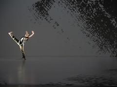_9040822 (黎島羊男) Tags: 雲門 關於島嶼 林懷民 formosa cloudgatedancetheatre cloudgate dance theatre linhwaimin olympus em1markii zuiko 1454mm