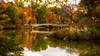 Autumn in the Park (Gary Walters (offline for a bit)) Tags: sony autumn reflections nature foliage sonya7r longexposure nyc water gary walters colors centralpark landscape fall urban bowbridge garywalters urbanlandscape newyork unitedstates us sel2470z