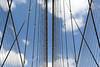Interplay of cables (Jan van der Wolf) Tags: map141120ve clouds cables symmetric symmetry symmetrie bridge brug brooklynbrigde interplayoflines playoflines lijnen lijnenspel wolken kabels tuien ropes nyc newyork