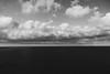 Greencoast #3 (Fabrizio Ara) Tags: samyang24mmt15asifumc samyang 24mm f14 1424 fahc manualfocus sony a7 ilce7 manualfocuslens vintagelens samyang24mm14 bianconero mono black white bianco nero bw blackwhite blackandwhite blancoynegro monochrome bn dark monochromatic ritratti portraits portrait volto viso faccia ritratto evocative emotional fineart sardegna sardinia italy italia
