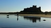 A walk on the beach (WISEBUYS21) Tags: bamburgh beach castle reflection sun sea sand dog walk walker blue sky dune dunes grass northumberland northumbria northeastofengland wisebuys21 11th november 2017 11112017