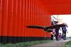 Hawk - 3 (HAMA-ANNEX) Tags: k1 hdpentaxdfa150450mmf4556eddcaw bird hawk 鳥