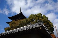 2017/12 東寺 #02 (*Setuka) Tags: kyoto 京都 九条 大宮 東寺 五重塔