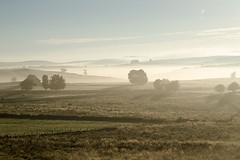 Marchastel, Lozère (lyli12) Tags: brume aubrac lozère languedocroussillon paysage landscape leverdesoleil campagne france nikon d7000