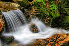 Moving Water (pandt) Tags: whitemountains whitemountainnationalforest newhampshire randolph forest trees rocks flowingwater motion moving water coldbrookfalls creek river stream waterfall granite moss leaves white green colors colorful outdoor nature landscape longexposure canon eos slr 7d