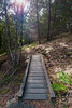 Footbridge on Carson Falls Trail (Matt McLean) Tags: bayarea california footbridge forest hiking landscape marin trail bolinas unitedstates us