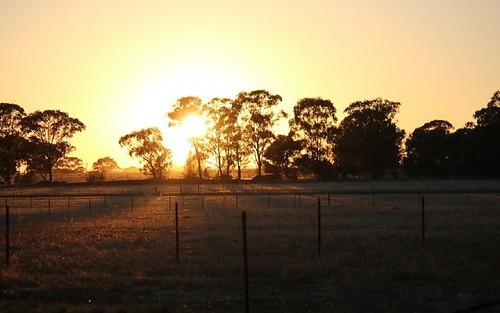 Lot 12, Ellerslie Estate, Temora NSW