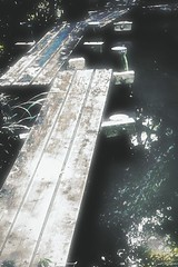 八つ橋 (Soem Yoshida) Tags: water river bridge japan pool pond surface