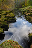 Exiting the Strid (andythomas390) Tags: thestrid boltonabbey north yorkshire yorkshiredales wharfe autumn nikon d7000 18200mm