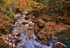 Valley stream in a late fall (chikaraamano) Tags: dreamy flow sunlight lovely clear water stones rocks mountain leaving season drags tree color valley creature lateautumn stream ravine finally forest outdoor upstream charmed repeatedly naturallight freely