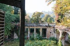The Lost Eden (maxmene70) Tags: urbex urban tree autumn villa eden lost garden sky light dark decay exploration landscape canon wide