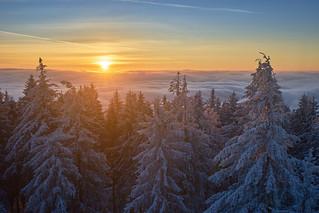 Sonnenaufgang im Schwarzwald