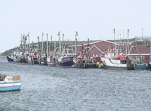 Port au Choix, Newfoundland
