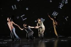 _9041497 (黎島羊男) Tags: 雲門 關於島嶼 林懷民 formosa cloudgatedancetheatre cloudgate dance theatre linhwaimin olympus em1markii zuiko 1454mm