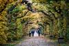 Květná zahrada, 1665–1675 (Anita Pravits) Tags: blumengarten czechrepublic garten hochzeit kremsier kroměříž květnázahrada mähren südmähren tschechien tschechischerepublik garden wedding českárepublika