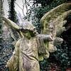 All Saints Cemetery, Nunhead. One of London's 'Magnificent 7'. First visit. (Flamenco Sun) Tags: overgrown moss bleak nunhead winter london cemetery angel broken