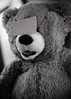 Voyeur (jasenk) Tags: dutchangle desaturation bw toy teddybear stickynote
