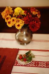 last harvest of raspberry this year. (Amselchen) Tags: athome fruits berry bokeh blur dof depthoffield sony a7 alpha7 zeiss carlzeiss sonnar za sonyilce7 fe55mmf18za sonnar5518za sonnartfe1855 season autumn fall harvest