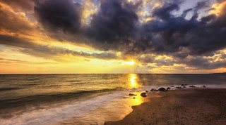 Golden Rain ...