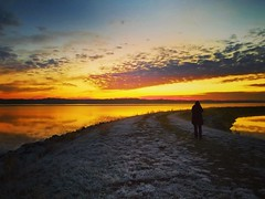 Sunrise from the shoreline! (Edale614) Tags: sunrise colorful colorfest columbus ohio nature naturelovers alumcreek statepark