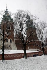 WAWEL, KRAKOW 060 (smtfhw) Tags: 2017 travel sightseeing poland krakow wawel history art