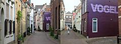Dans les rues de 's-Hertogenbosch, Brabant-Septentrional, Pays-Bas (claude lina) Tags: claudelina canon paysbas hollande holland nederland brabantseptentrional shertogenbosch boisleduc rue street maisons houses