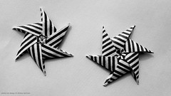 Origami Modular stars (Andrey Hechuev | Андрей Хечуев) Tags: hpbdstar andreyhechuev andriyx paperchiyogami chiyogami striped origami origamimodular modularorigami origamimodularstar modularstar origamistar star stella etoile stern estrella estrela zvezda papiroflexia papiroflexiamodular modulares modulari colormulticolor macro closeup tiny units6 happybirthday millerighe