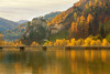 Rabenstein Castle in Fall (Bernhard Sitzwohl) Tags: rabenstein mur aldriach wood autumn autumncolours outdoor landscape nature gold fall water trees burg castle lee filter