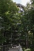 Tree top path at Proora (meine.augenblicke) Tags: baumwipfelpfad deutschland wege germany 2017 rügen towers prora urlaub mecklenburgvorpommern island balticsea ways ostsee türme insel kameranikond750 binz de