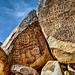 Grapevine Canyon Petroglyphs