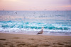 La Barceloneta (aaamsss) Tags: barceloneta barcelona city beach sea seaside mare sunset nature landscape landscapephoto mediterranean mediterrani aaamsss