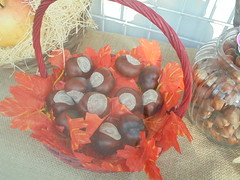 565 (en-ri) Tags: castagne cestino vetrina sony sonysti foglie leaves arancione marrone rosso