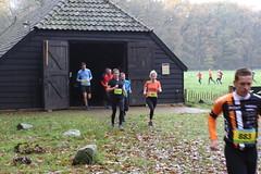 Haarlerbergloop 2017