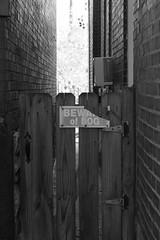 Beware of Dog (pasa47) Tags: stlouis stl stlouiscity cityofstlouis southside southstlouis southcity 2017 november fall autumn fujifilm fujixe1 mo missouri
