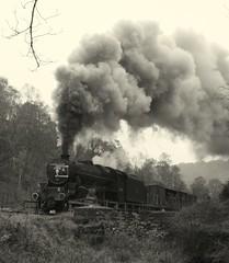 44806 (feroequineologist) Tags: 44806 black5 nymr northyorkshiremoorsrailway lms railway train steam