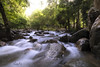 Unstoppable (My Pixel Magic) Tags: waterscape waterfall forest forestmorning water flow longexposure slow shutter