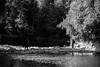 found a spot (jellamalo) Tags: nature hike river adventure blakandwhite
