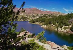"""La beauté sauvage des Pyrénées-Orientales !  """"France""""   -   The wild beauty of the Pyrénées-Orientales! (josianelavielle) Tags: lacbleu montagnes ciel nuages rochers arbres sapins pin paysages nature"""