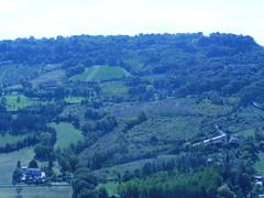Orvieto (michael kogan) Tags: grass greenhill landscape hill green italy