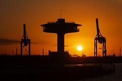 Hafenskyline am Abend (Lilongwe2007) Tags: hamburg deutschland hafen containerbrücken pilzturm hafencity architektur sonnnenuntergang industrie