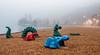 Monstres dans le brouillard (Lucille-bs) Tags: europe france bourgogne côtedor dijon lackir brouillard dragon monstre sable plage lumière eau lac