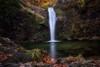 At the end of autumn... (Dimitar Balyamski) Tags: nature landscape forest river waterfalls mountain autumn mood bulgaria balyamski