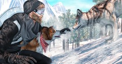 When Luna meet the great wolf. (brian.werefox) Tags: findyours shiny shabby dufaux deadwool flite ro remarkable oblivion jian stealthic complex nu doux catwa clef de peau snow wolf adventures