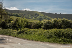 South Downs, East Sussex (Scotland by NJC.) Tags: southdowns nationalpark ditchling westsussex england uk scarpslope hill تَلّ colina 小山 brdo kopec bakke forhøjning landskabet heuvel mäki colline hügel λόφοσ collina 丘 언덕 ås wzgórze deal холм backe เขาเตี้ยๆ tepe coğrafya пагорб đồi