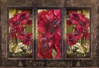 Xmas triptych