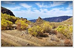 Berg/Vulkan-Landschaft (Don111 Spangemacher) Tags: urlaub reisen himmel herbst berge vulkangestein pflanzen park naturpark teneriffa landschaft gebirge felsen subtropen wege wildromantisch