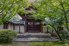 Eikando Zenrinji 2 (21mapple) Tags: ikando zenrinji kyoto temple japan japanese structure building door trees tranquil peaceful religion religious outdoors outdoor outside out